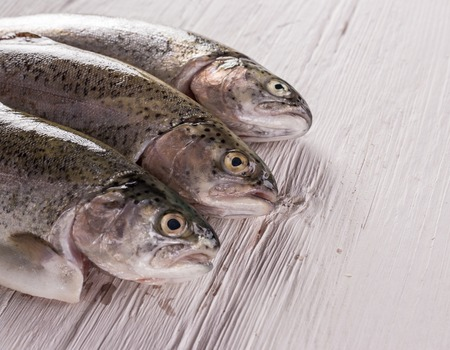 dorade: Rainbow trouts on white wooden table, close-up Stock Photo