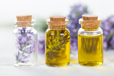 aromatherapy oils: Lavender flowers with essential oil, close-up.