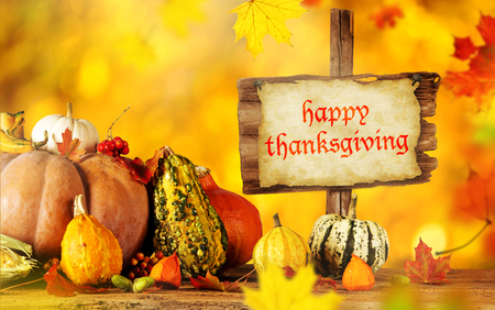 harvest background: Happy Thanksgiving  - harvest background with pumpkin and dry leaves