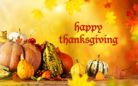 happy thanksgiving: Happy Thanksgiving  - harvest background with pumpkin and dry leaves