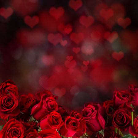 red rose bokeh: Red roses, Valentine background, romantic symbol.