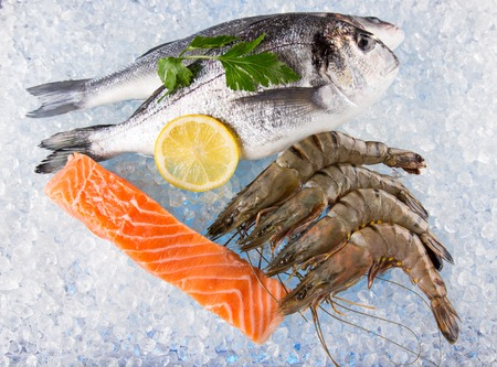 ice crushed: Fresh seafood on crushed ice, close-up.