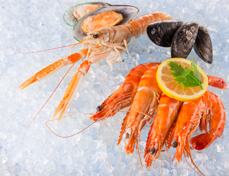 crushed ice: Fresh seafood on crushed ice, close-up.