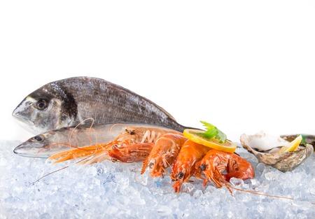 新鮮な魚介類に砕いた氷、クローズ アップ。 写真素材 - 51833950