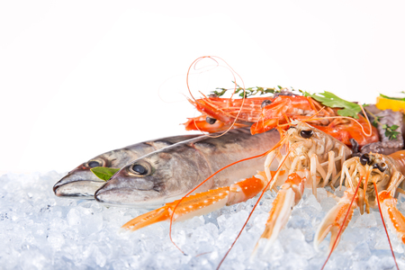 frozen: Fresh seafood on crushed ice, close-up.