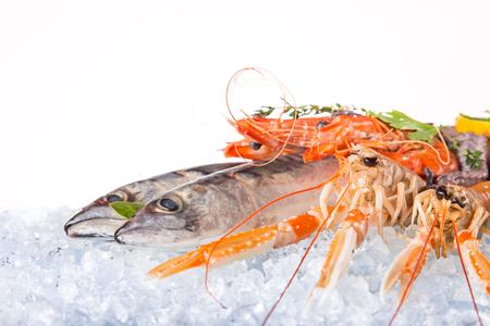 mariscos: pescados y mariscos frescos en hielo picado, primer plano.