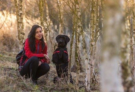 betula pendula: Girl sitting with dog in birch forest. Friendship between woman and dog. Stock Photo