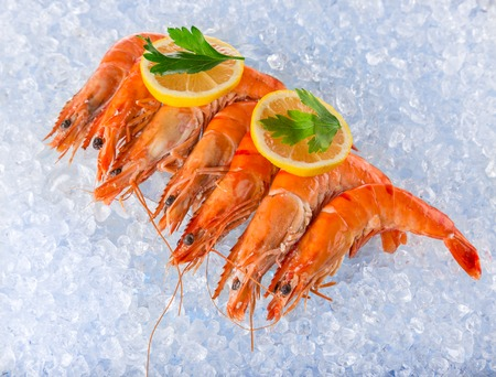 food industry: Fresh seafood on crushed ice, close-up.
