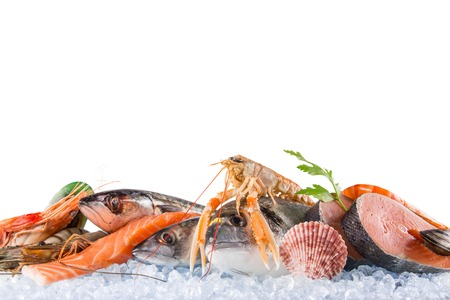 sparus: Fresh seafood on crushed ice, close-up.