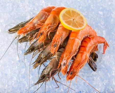 ice crushed: Fresh shrimps on crushed ice, close-up. Stockfoto