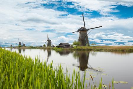 伝統的な風車と湖の植物。オランダ