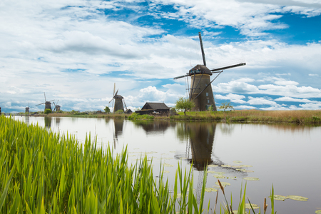 Lake vegetation with traditional wind mills. Holland 스톡 콘텐츠