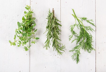 dill: Fresh herbs on wooden background, close-up.