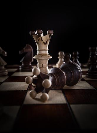 Blanc roi d'échecs plante noir roi d'échecs. concept de la concurrence.