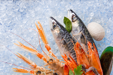 catches: Fresh seafood on crushed ice, close-up.
