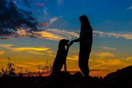 mutt: A silhouette of a young woman and her mutt dog at sunset.