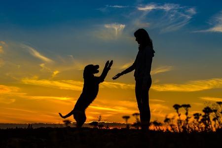 silueta niño: Una silueta de una mujer joven y su perro mutt al atardecer.