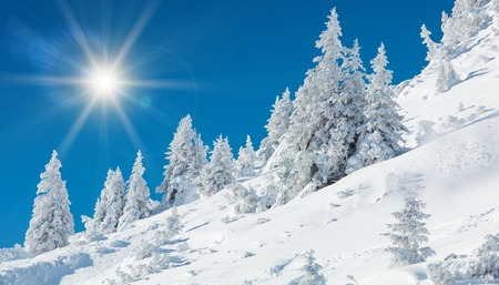 A frosty and sunny day is in mountains. WInter theme.