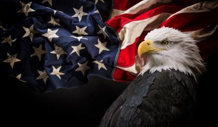 Águila calva americana con la bandera.