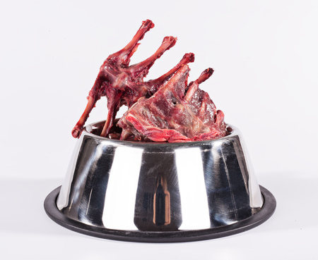 Dog´s metal bowl with raw meat isolated on white.