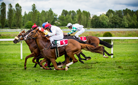 Race horses with jockeys on the home straight Stock Photo