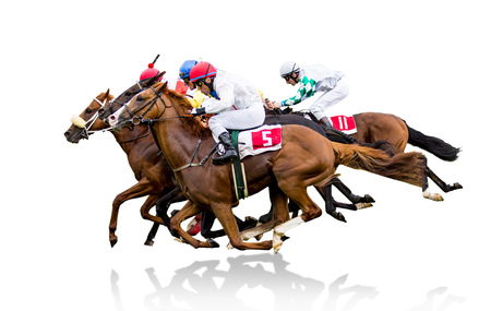 Race horses with jockeys on the home straight Imagens