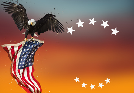 national congress: Bald Eagle with American flag