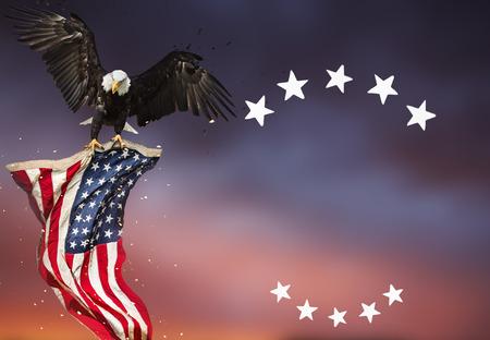 Guila calva volando con bandera americana Foto de archivo - 81559769