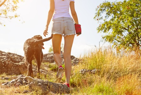 Young woman with her dog walking outdoor during summer day. Stock Photo
