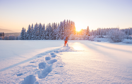 Snowshoe walker running in powder snow with beautiful sunrise light. Outdoor winter activity and healthy lifestyle Standard-Bild