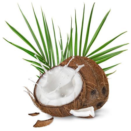 close-up de um cocos com respingo de leite. Isolado no fundo branco.