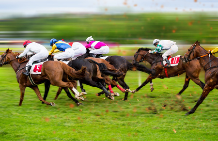 Race horses with jockeys on the home straight. Shaving effect.