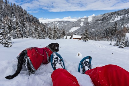 Snowshoe walker with dog in powder snow. Outdoor winter activity and healthy lifestyle Stock Photo