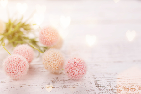 Flowers composition for Valentines, Mothers or Womens Day. Pink flowers on old white wooden background. Still-life. Stockfoto