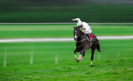 Race horse with jockey on the home straight. Shaving effect.