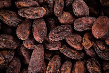 Pattern of the cocoa beans, close-up.