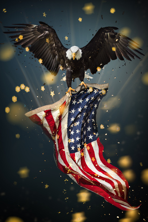 Bald Eagle with American flag Banco de Imagens - 98147308