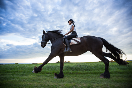 Beautiful woman riding a black friesian horse. Reklamní fotografie - 101232418