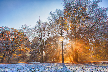 Autumn forest covered with first snow powder.. Beautiful rural scenery. Stock Photo
