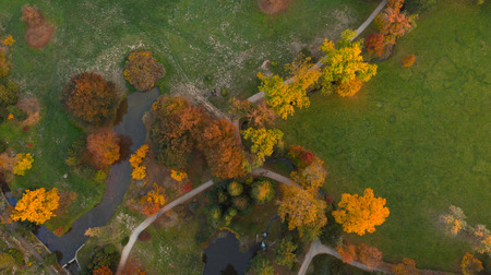 Aerial view of autumn foliage forest. Stock Photo - 110276773
