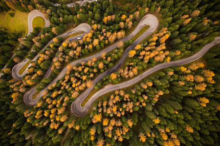 Bochtige weg in herfstbos. Stockfoto
