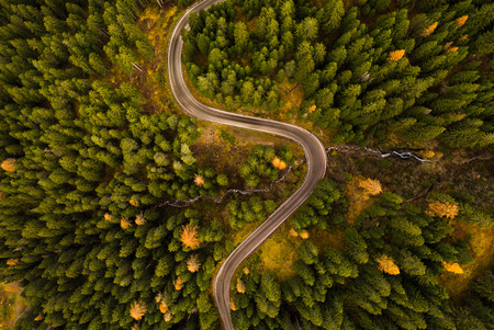 Curvy road in atumn forest. Stock Photo