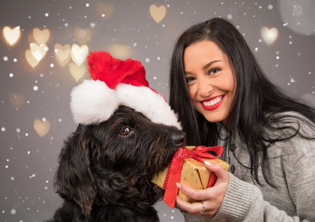 Happy brunette girl giving a gift to her dog. Banco de Imagens