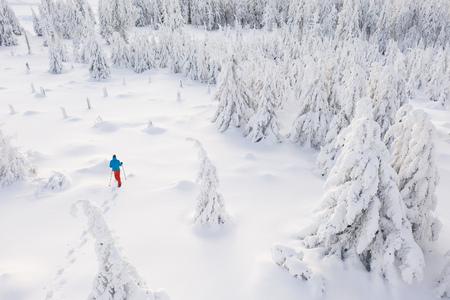 Sunny winter landscape with man on snowshoes. Foto de archivo - 119166919