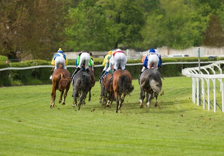 Race horses with jockeys on the home straight 写真素材