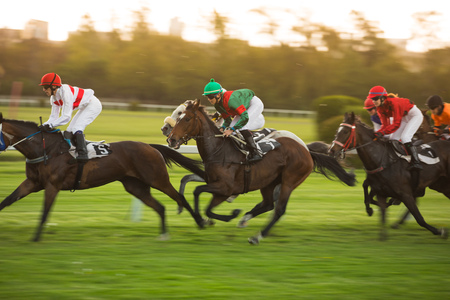 Race horses with jockeys on the home straight Фото со стока