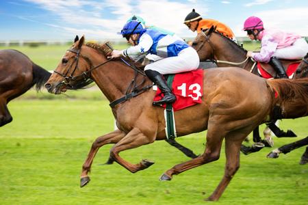 Konie wyścigowe z dżokejami na prostej domowej