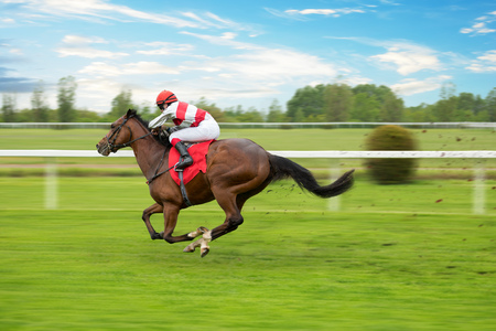 Race horse with jockey on the home straight Фото со стока