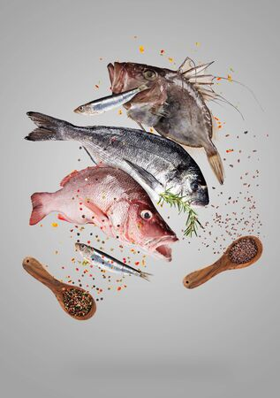 Flying raw sea fish with ingredients for cooking. Food preparation concept Imagens