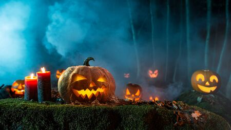 Halloween pumpkins on dark spooky forest. 免版税图像